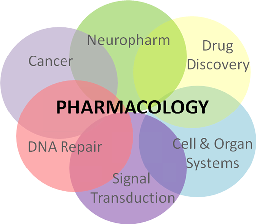 University Of Pittsburgh Graduate Program In Molecular Pharmacology